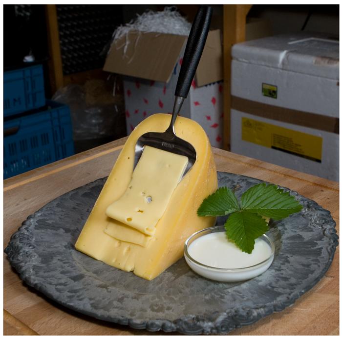 Jonge biologische kaas van de nylander